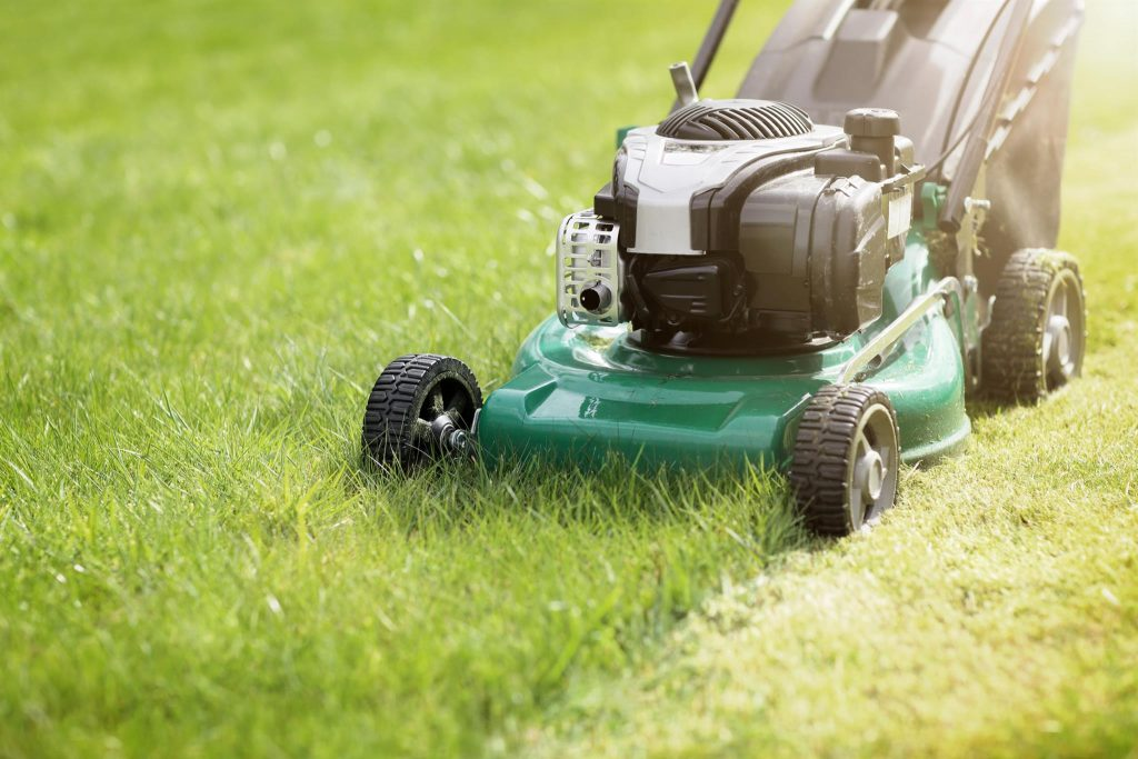 Effective Lawn Care