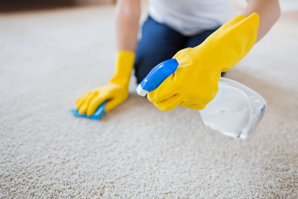 Clean Your Carpet properly2