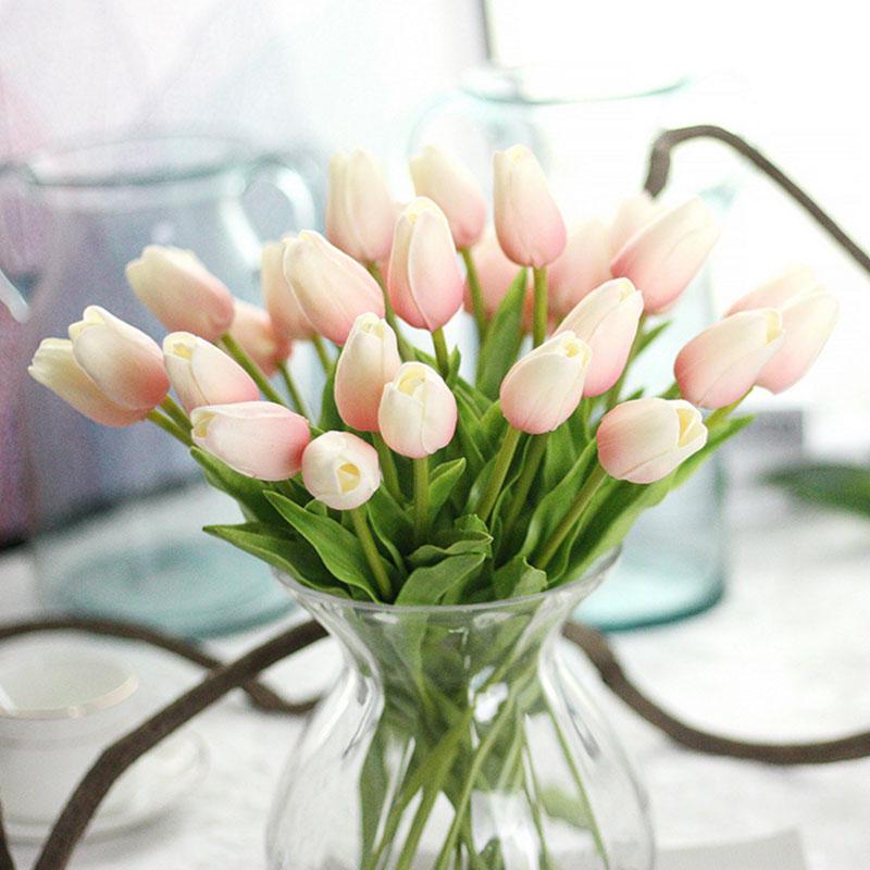 tulip bulbs1