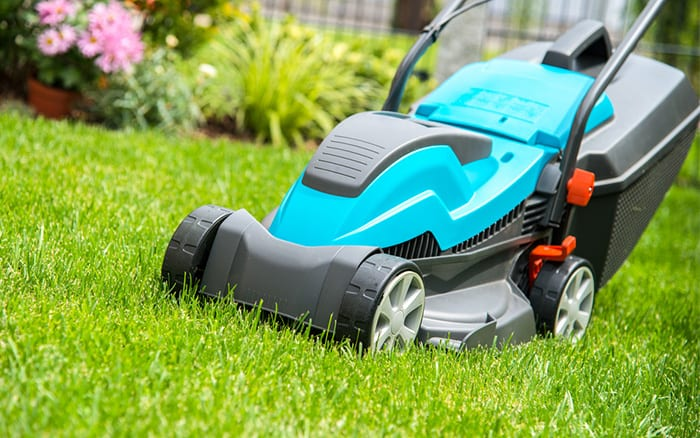 Lawn Mower for the Yard