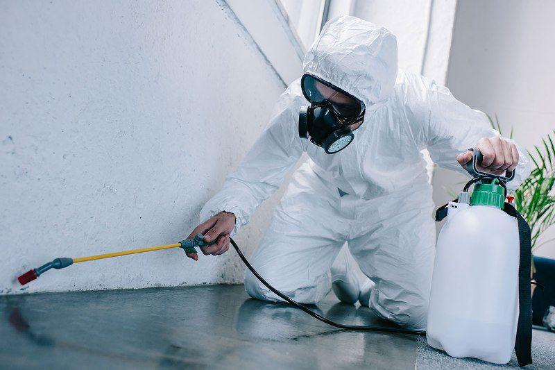Organic Pest Control1