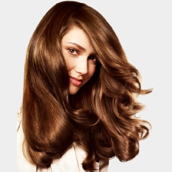 Human Hair Wigs2