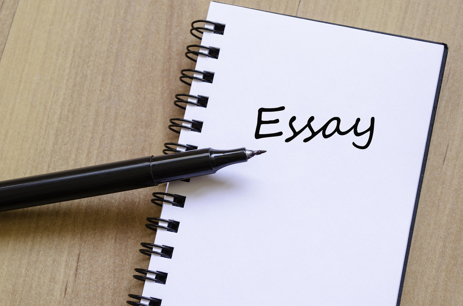 Essay Writing1