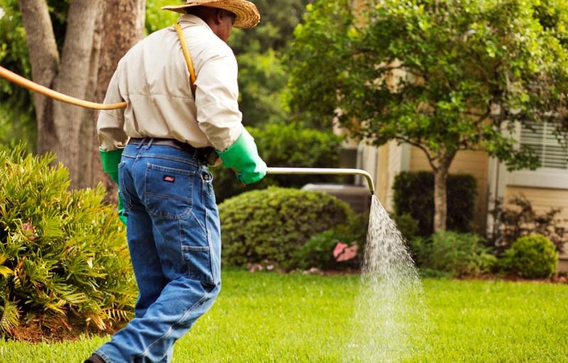 Lawn care treatment